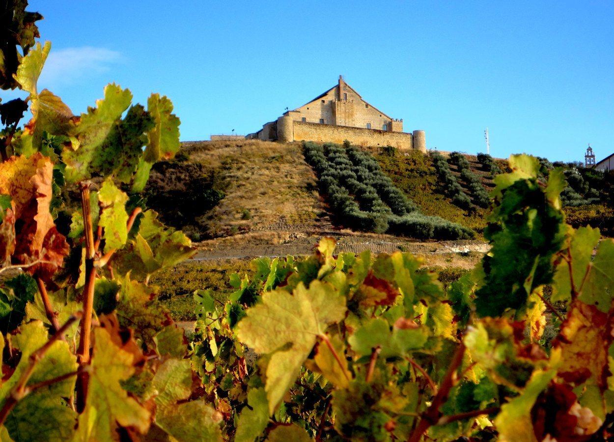 Castillo entre viñedos en la Campiña Sur cordobesa