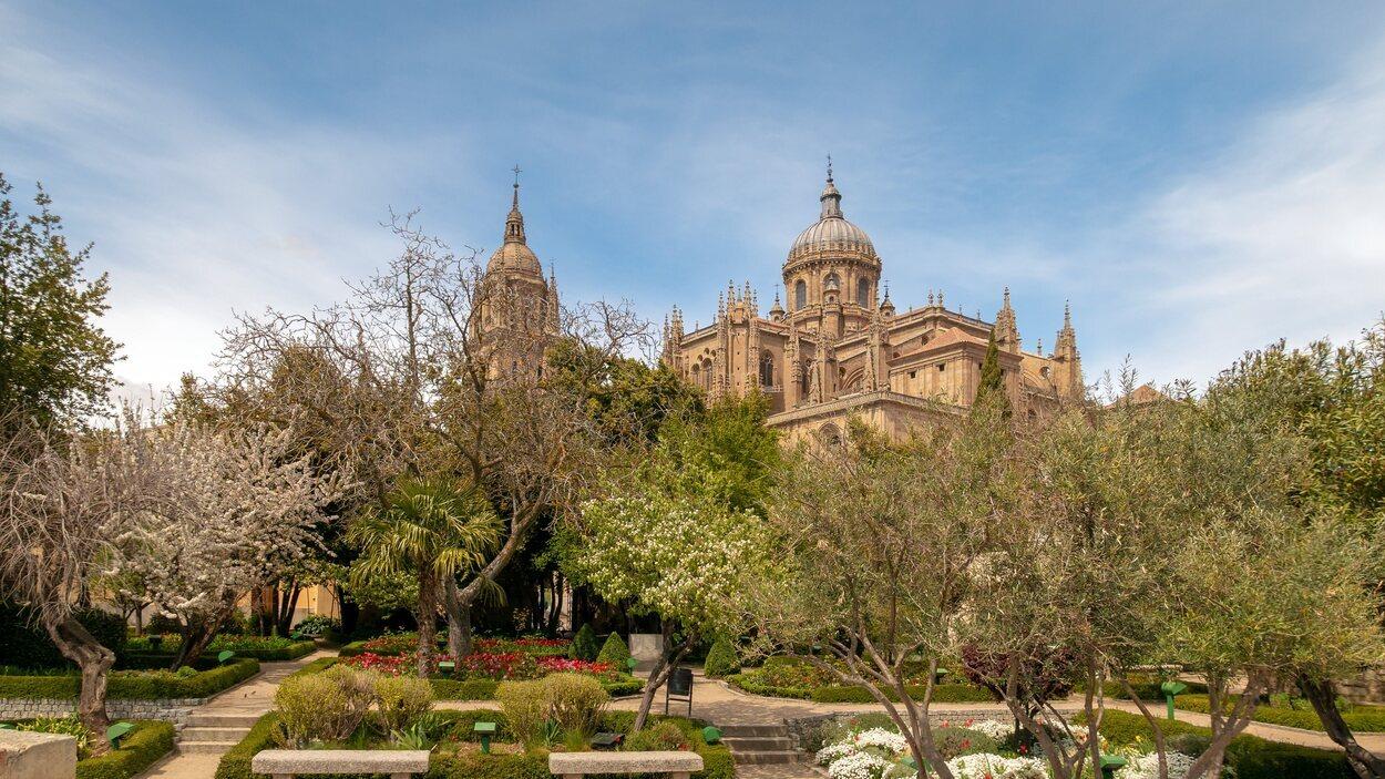 Vistas el casco histórico de Salamanca