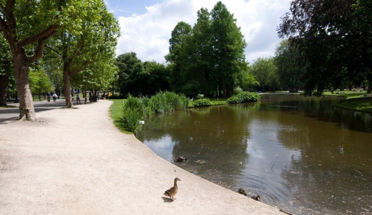 Vondelpark es un lugar perfecto para descansar entre museo y museo