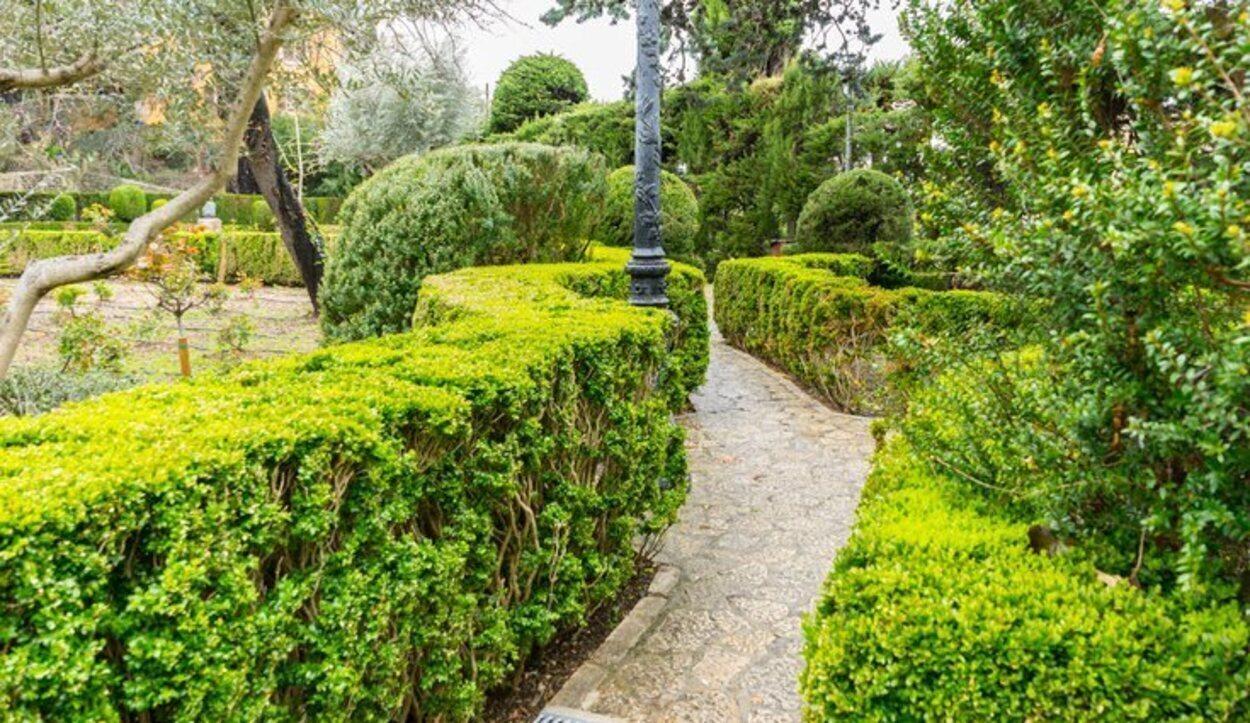 Parte del atractivo turístico de Valldemossa es su gran cantidad de vegetación en los alrededores del pueblo y en sus jardines