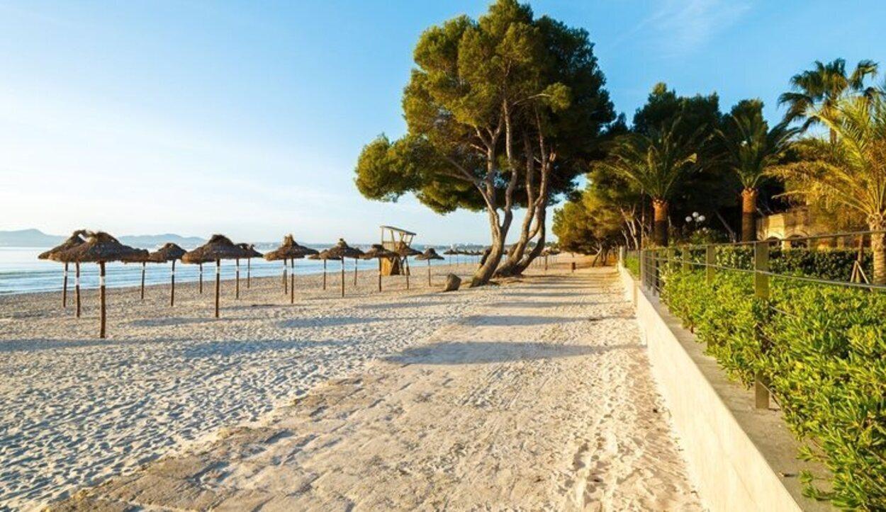 La Platja de Alcúdia, unida a la Platja de Muro, es la principal playa