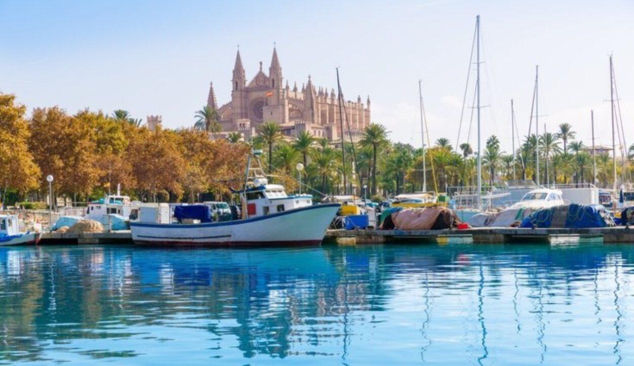 El contraste de ambiente urbano, natural y marítimo son un atractivo para Palma