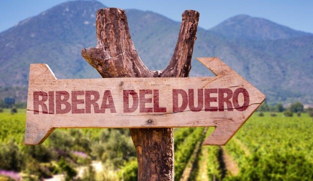 La Ribera del Duero cuenta con un gran jardín vinícola