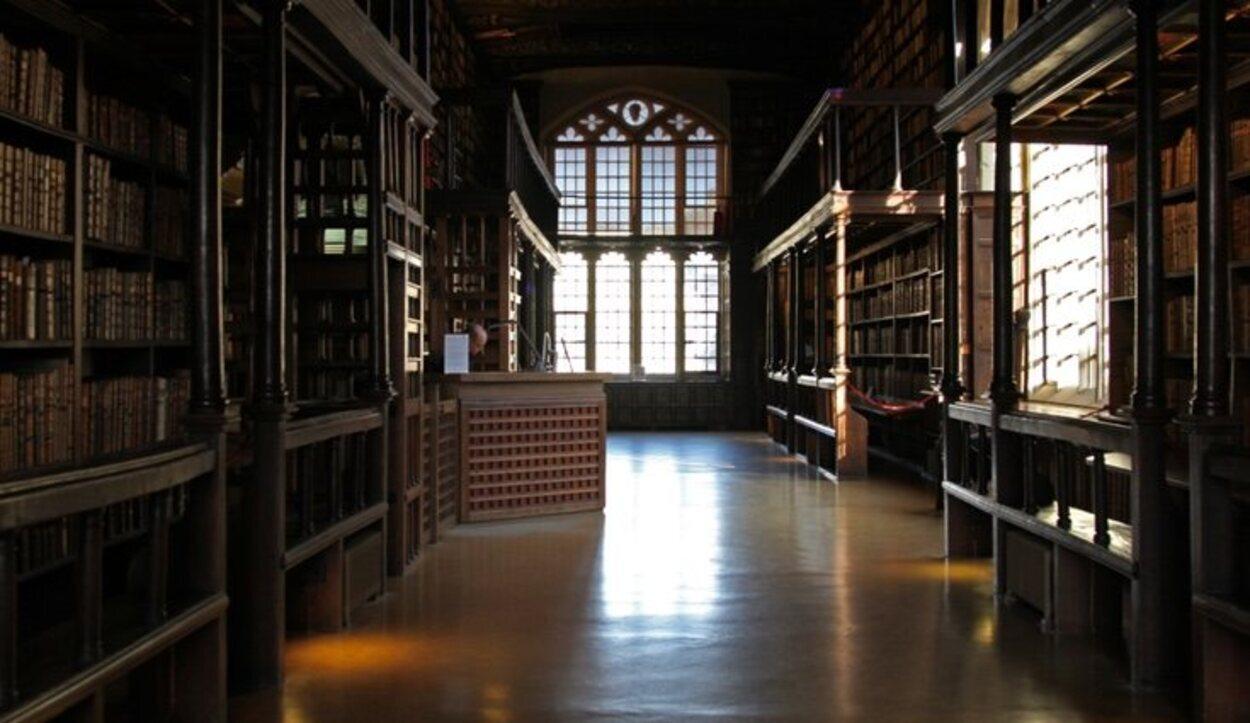 Esta biblioteca incluye estructuras de madera en su interior