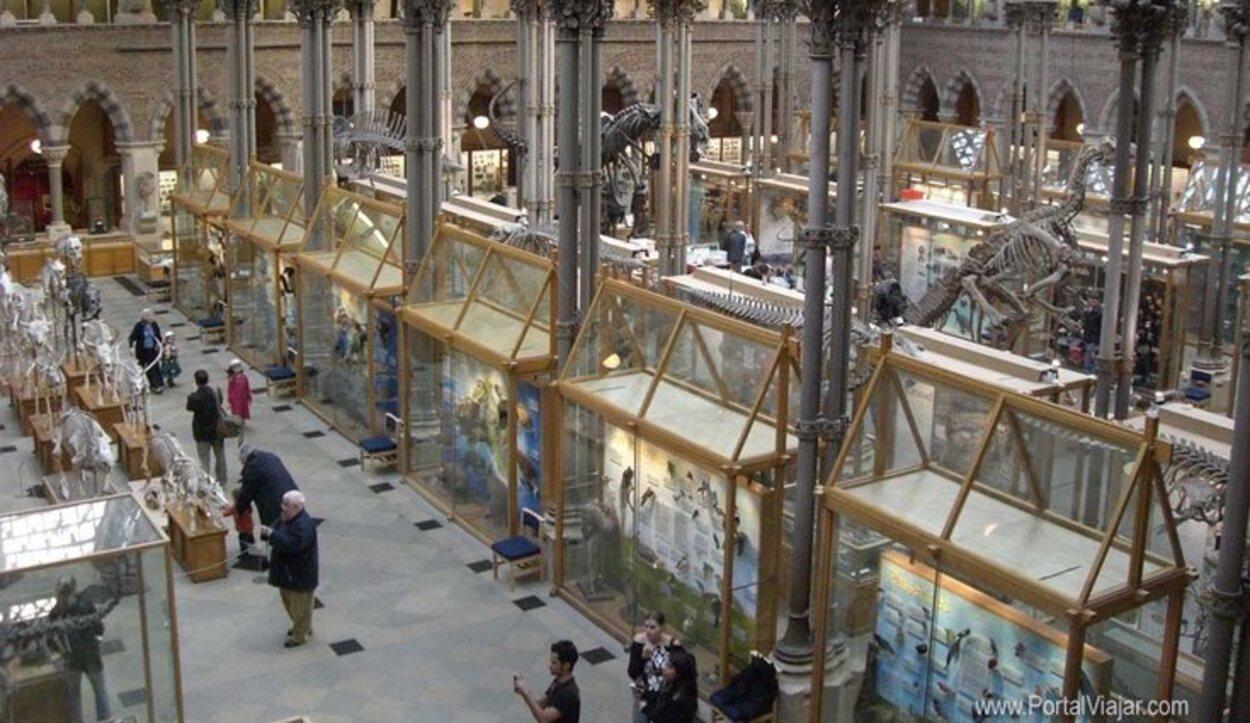 En este museo puedes hacer un recorrido por toda la historia de la humanidad