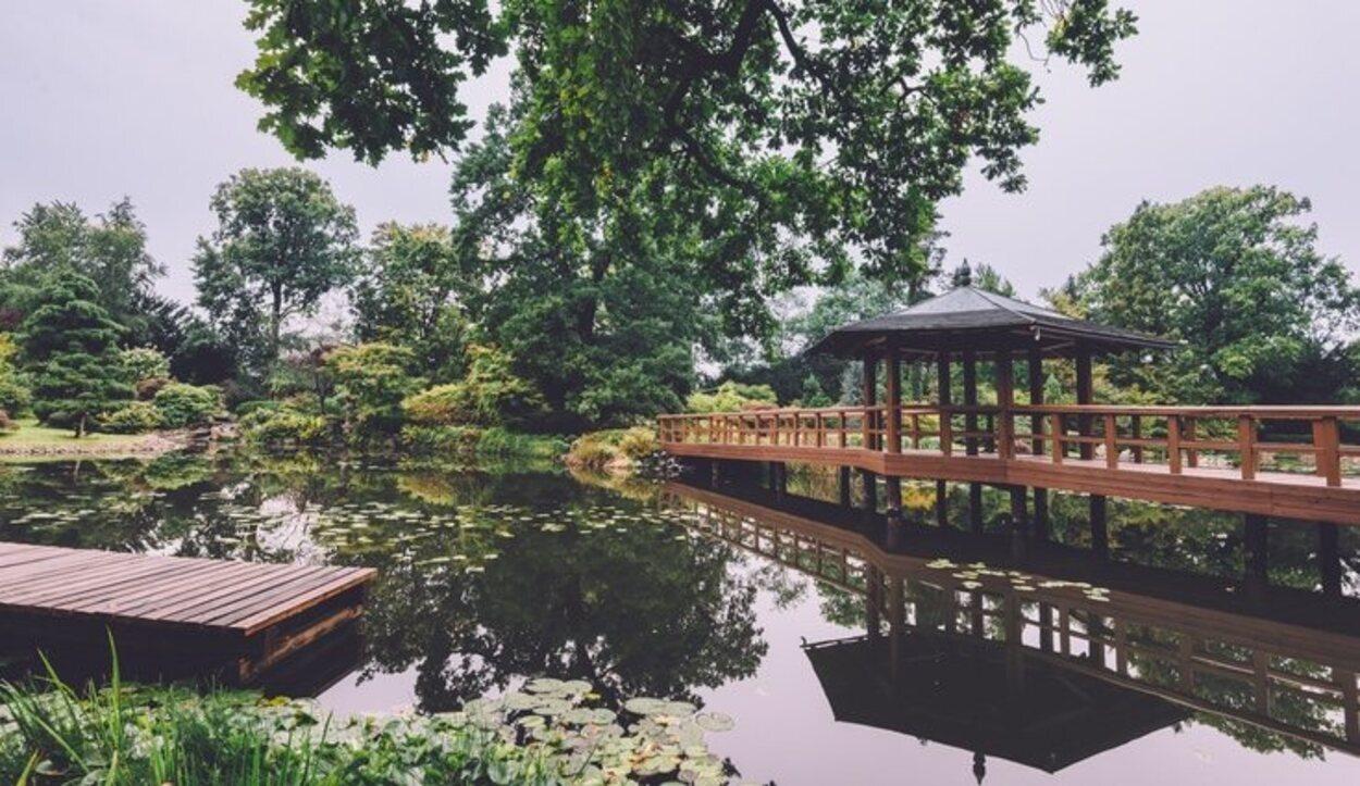 Uno de los bellos paisajes que encontrarás en el Jardín Japonés