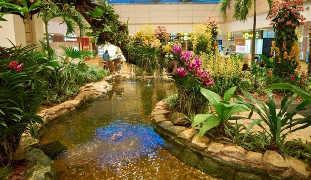 En interior se puede encontrar un jardín botánico con especies autóctonas del país