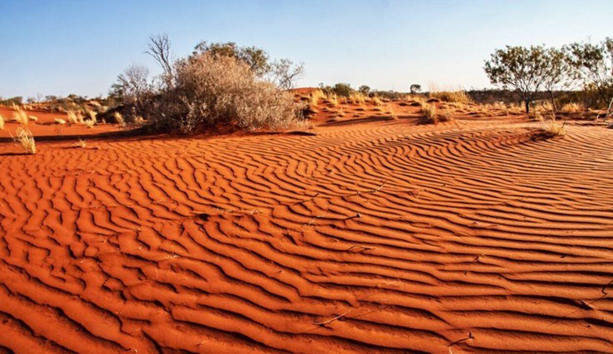Las excursiones por el desierto es mejor no realizarlas en verano