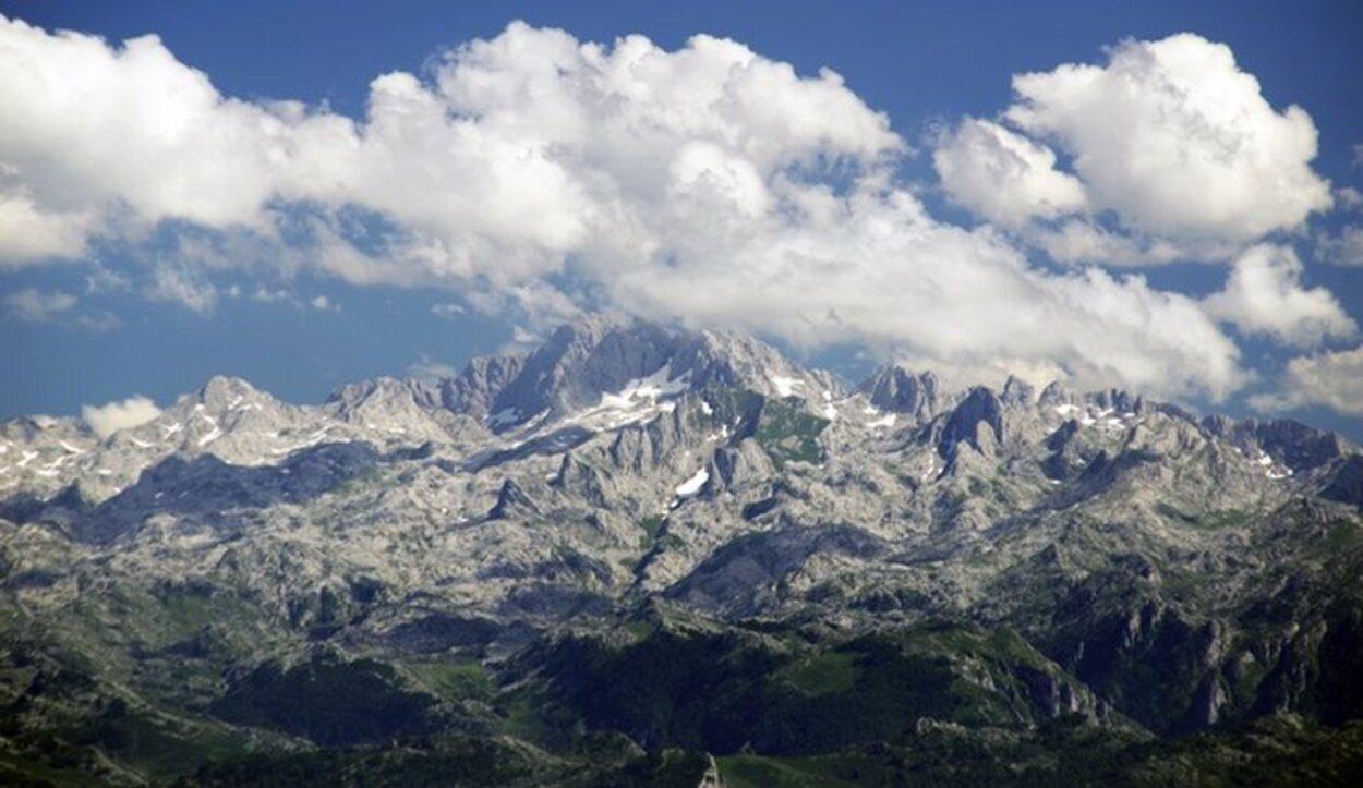 Los Picos de Europa posee más de 1.750 especies vegetales