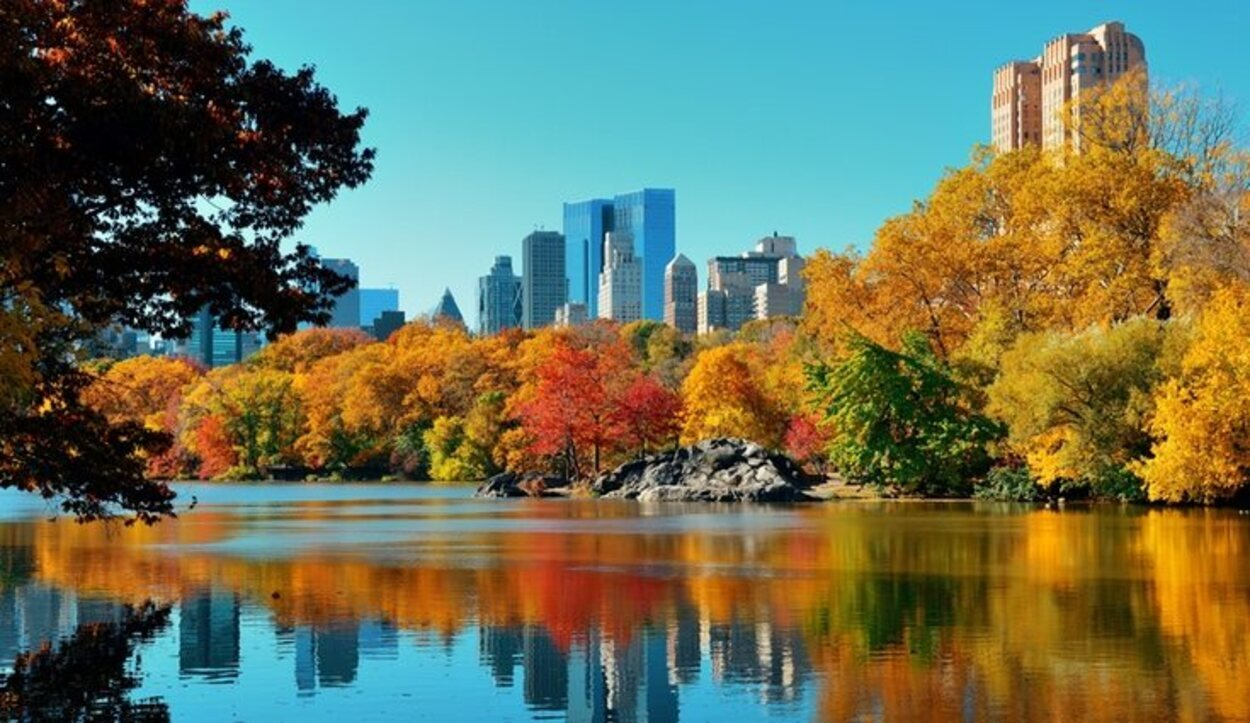 En Central Park en otoño se puede observar una gran variedad de colores