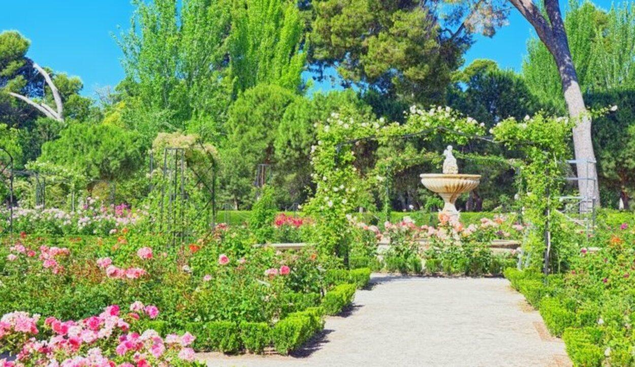 La Rosaleda es un lugar perfecto para pasear y disfrutar de las flores