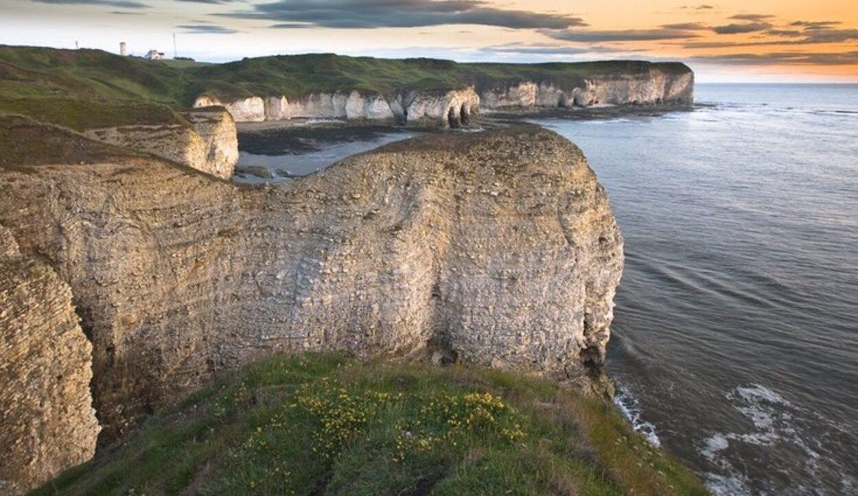 Los increíbles Bempton Cliffs