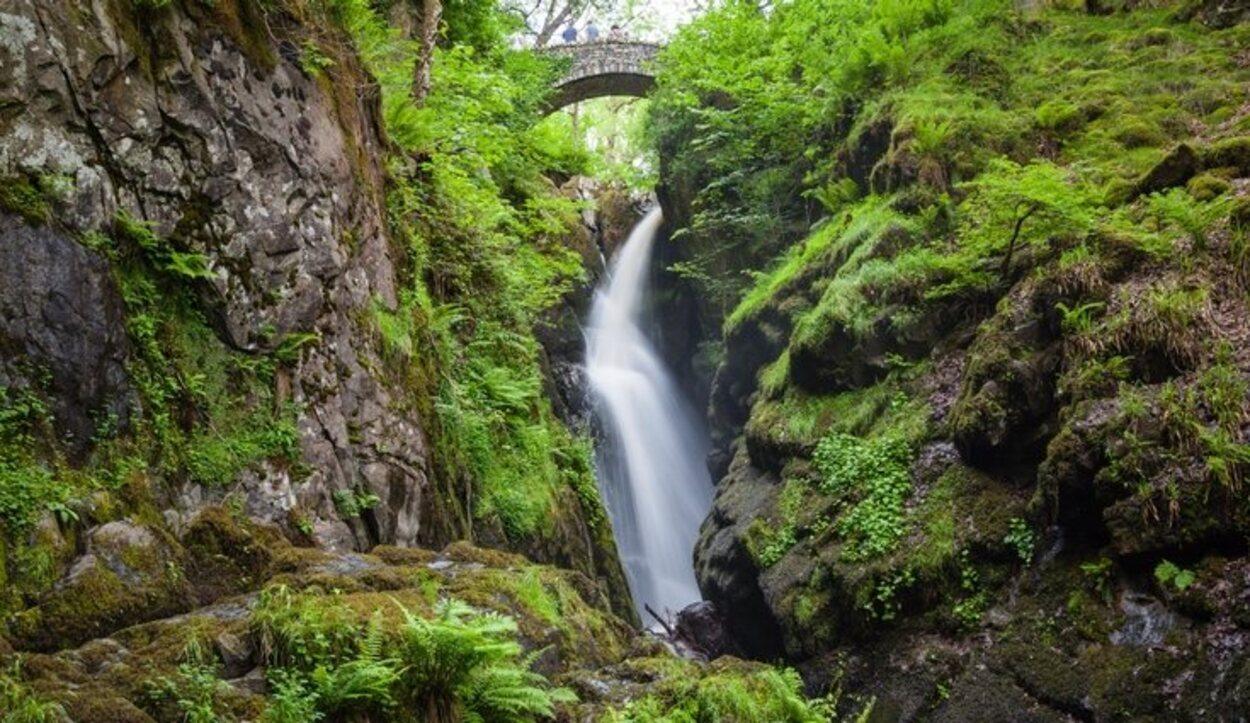 Aira Force Waterfall es un paisaje precioso para sacar tus mejores fotos