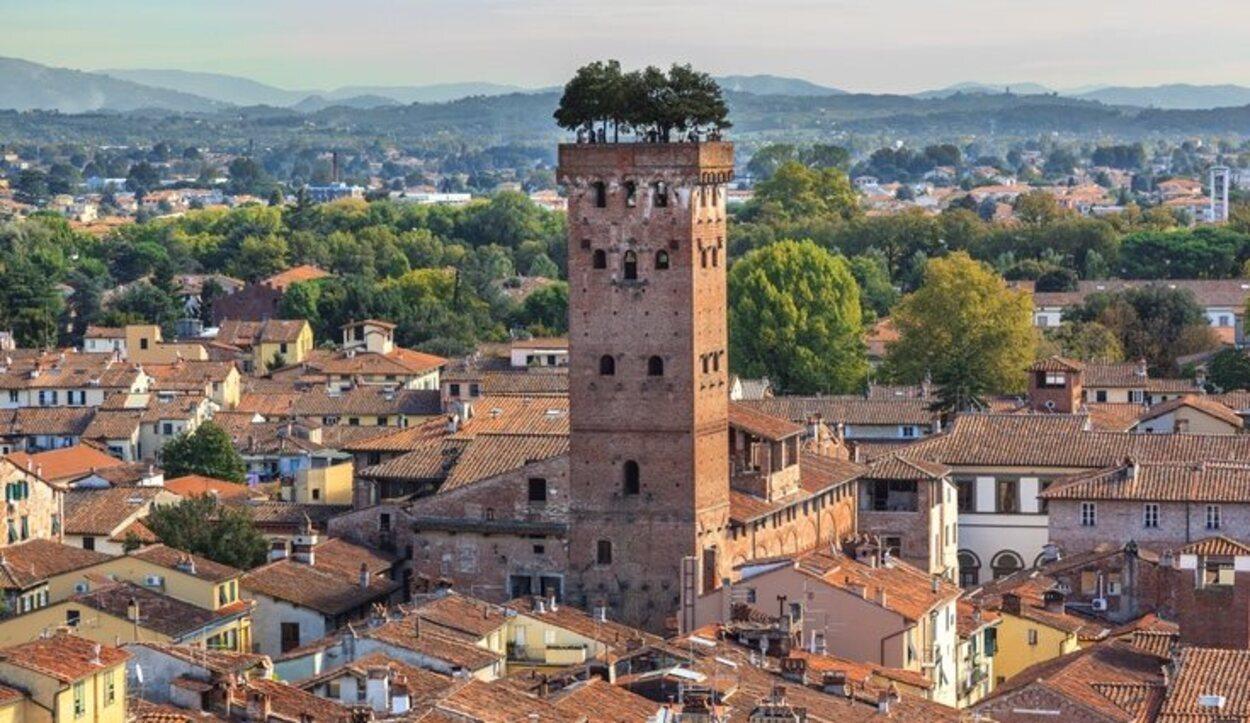 En la parte superior de la Torre Guinigi hay un jardín que contiene árboles de roble