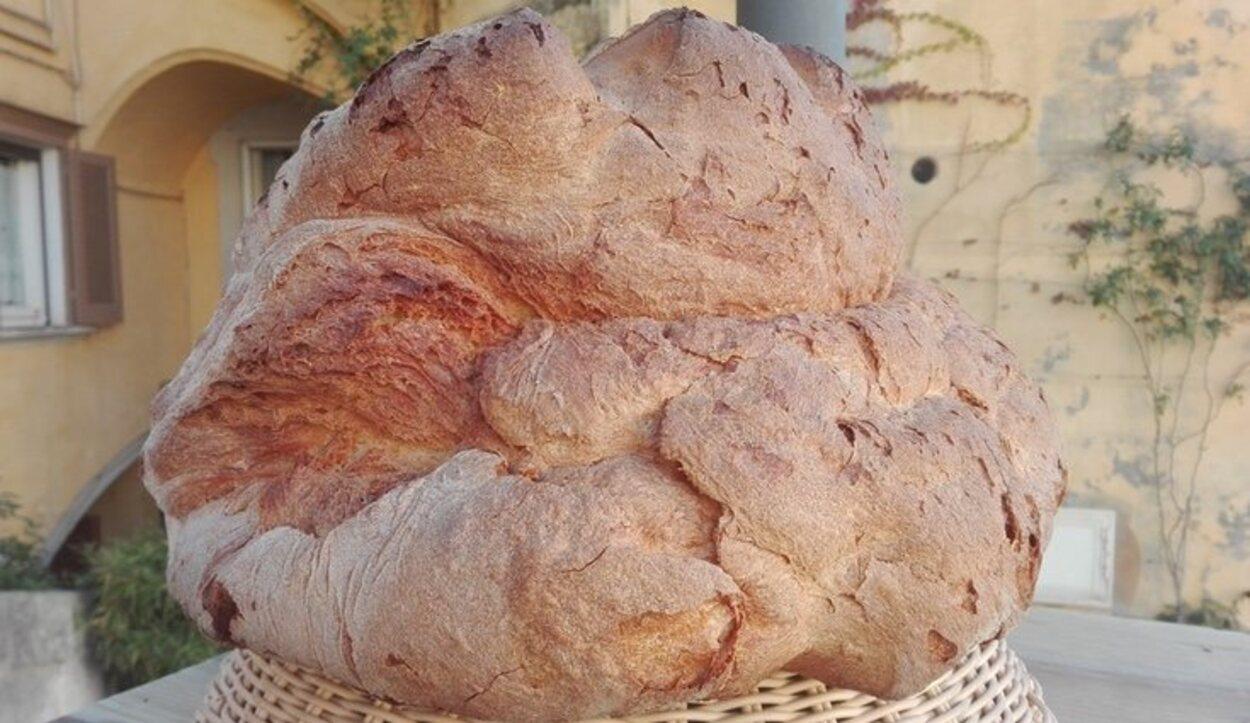 La forma y el sabor único del pan de Matera son el fruto de una antiquísima cultura