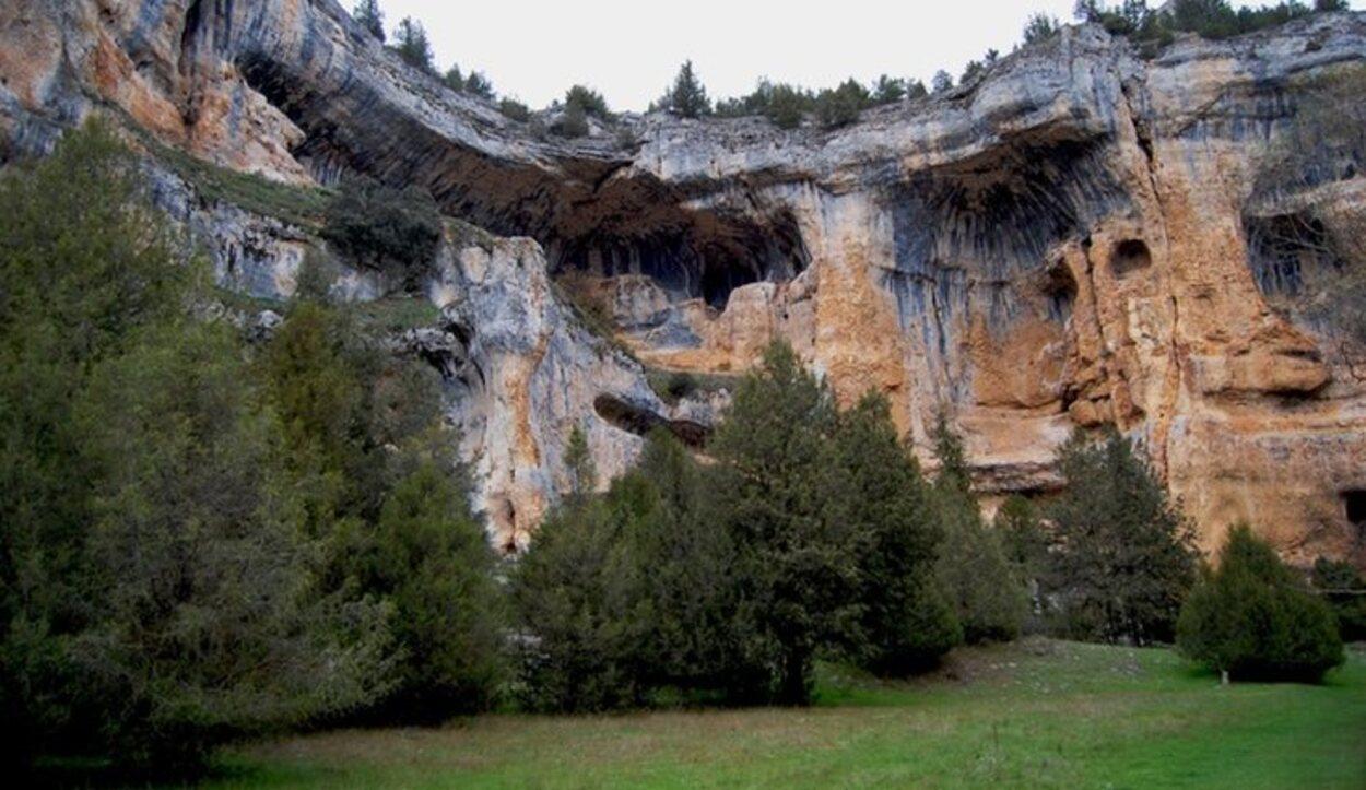 Numerosas especies de pinos o enebros anotan la nota verdad al paisaje