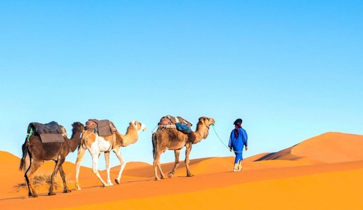 El clima en Marrakech es extremo, con frecuentes tormentas de arena