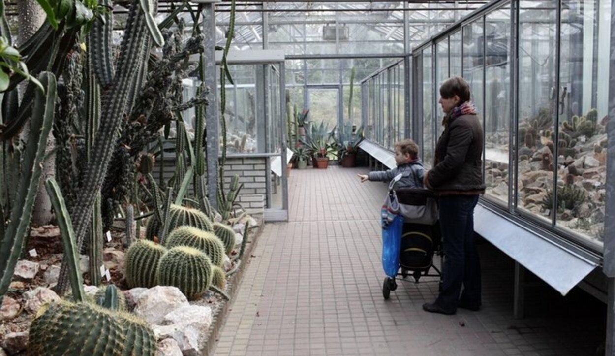 El recinto de cactus es uno de los lugares más chulos