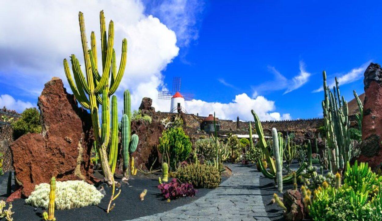 El Jardín de Cactus cuenta con su propia aplicación para planificar tu visita