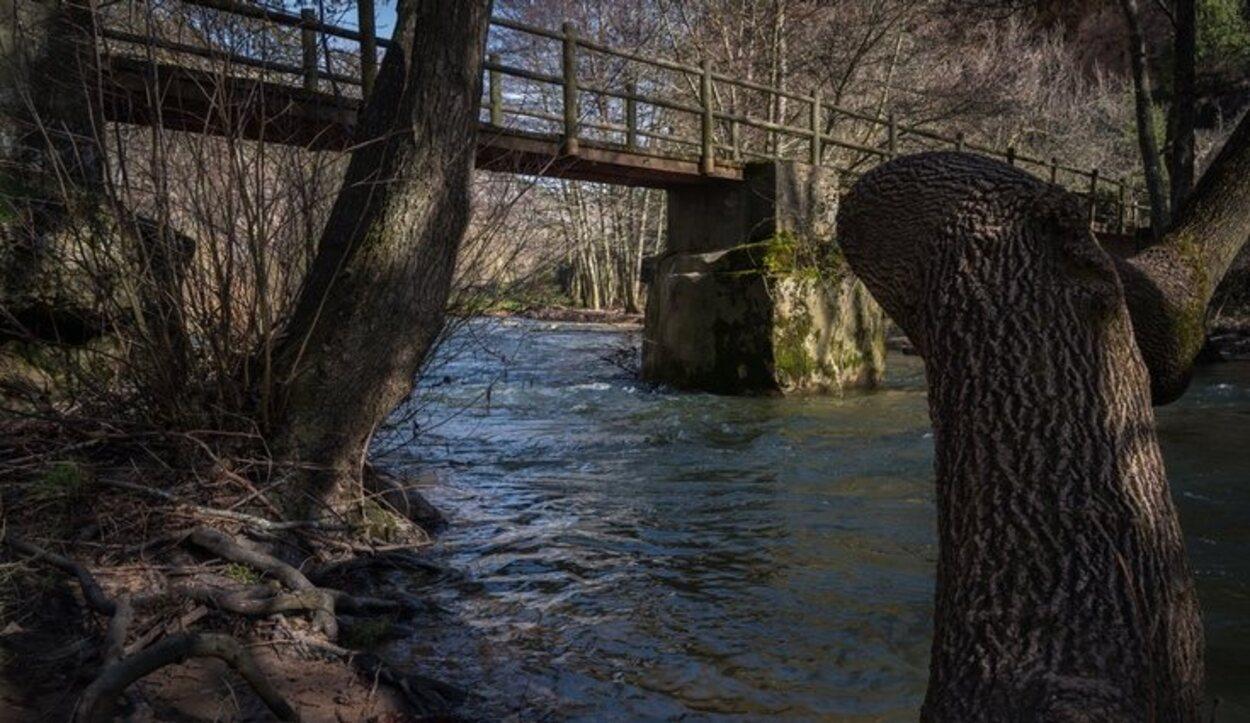 Música para los oídos al recorrer las aguas del río