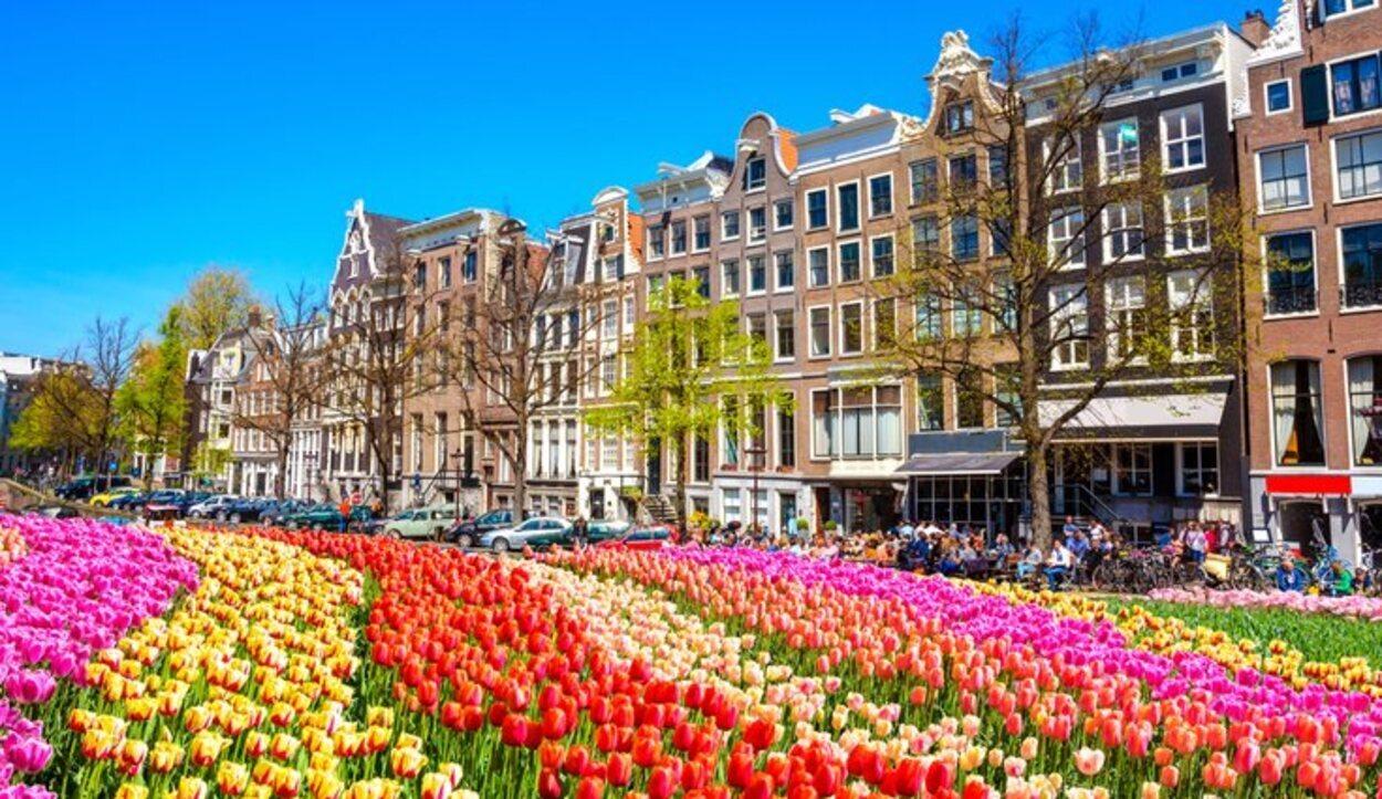 La primavera es un momento idóneo debido a la floración de los tulipanes