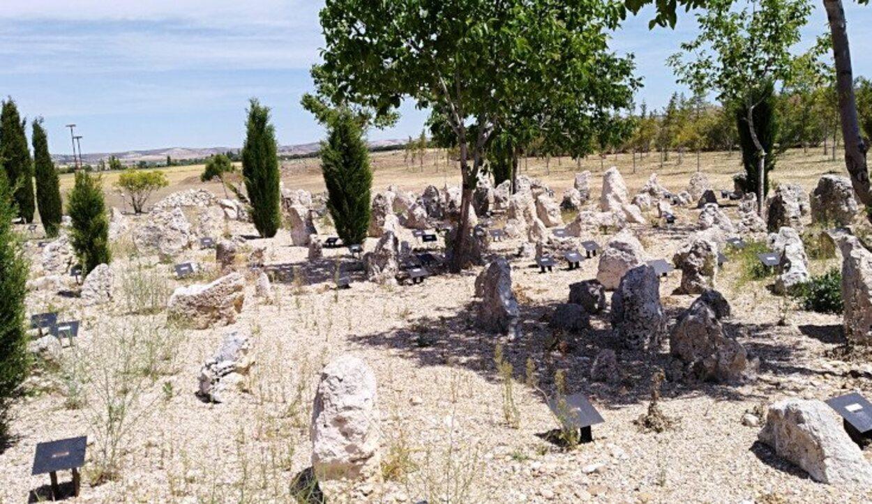 Panorámica de la necrópolis de la ciudad de Pintia