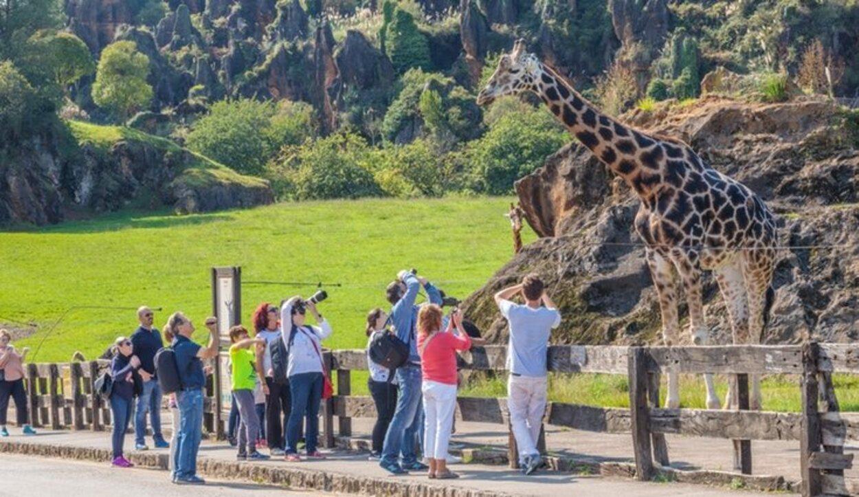 El Parque de Cabárceno está lleno de animales