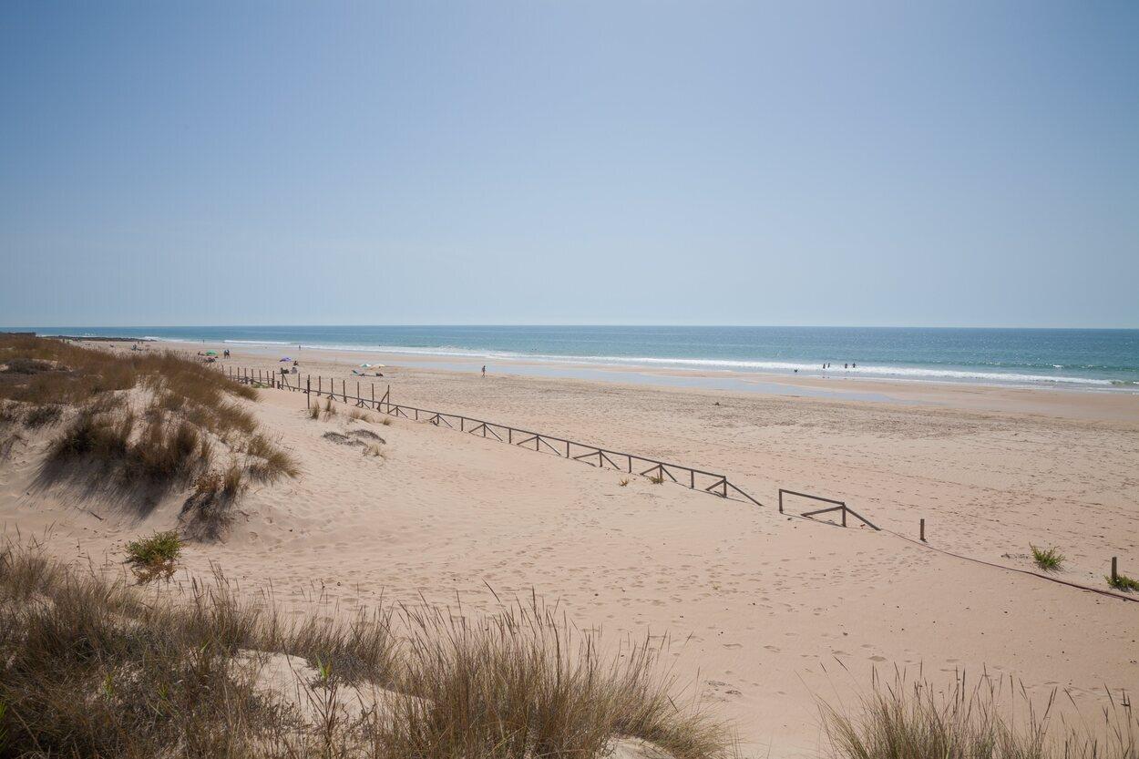 La playa del Palmar se encuentra en Vejer de la Frontera y está catalogada como una de las mejores playas andaluzas