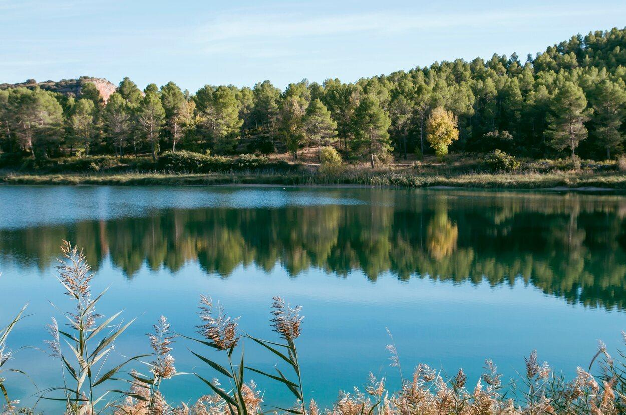 La flora y la fauna convierten a las lagunas en un lugar excepcional