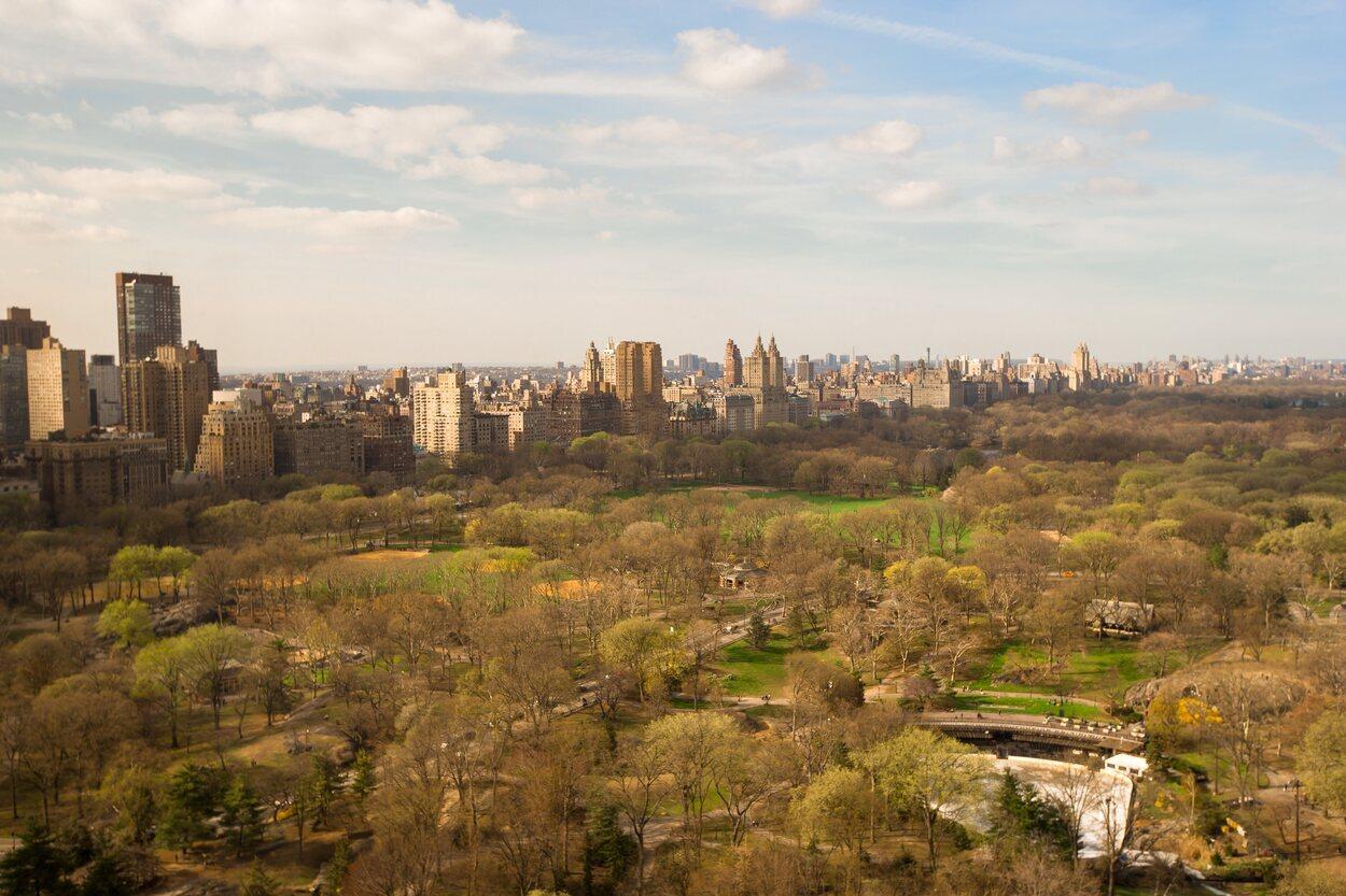 Central Park es todo un remanso de paz dentro del bullicio de la ciudad