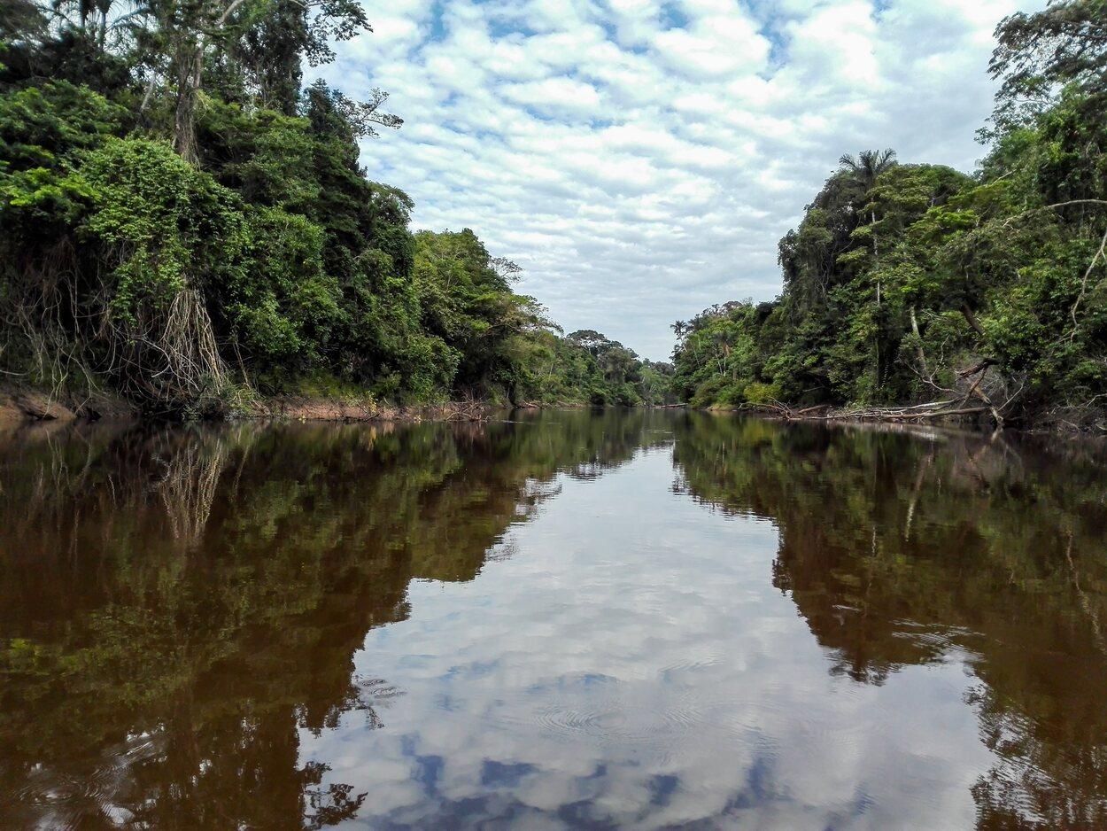 La Reserva Nacional de Pacaya Samiria cuenta con un gran valor natural